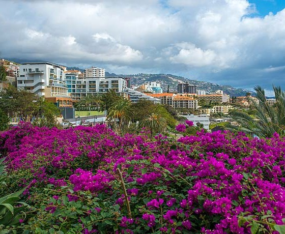 Jm Vacations Madeira Packages